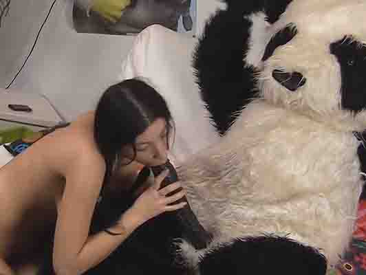 Young college girl fucking a panda