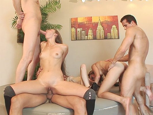Single party finishes being an orgy of anal sex