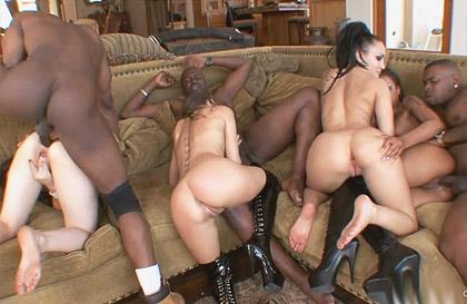 Hotgold rocco pornstars orgía interracial 9