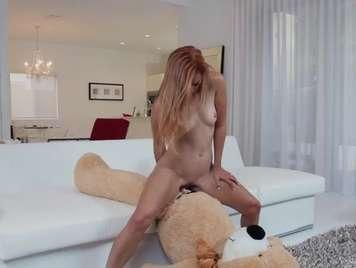 Redhead gioca con il suo orso e finisce ben scopata